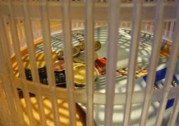 avarice-en-cage-7008cf7c0f678b2fd6056b53d50223751587f354