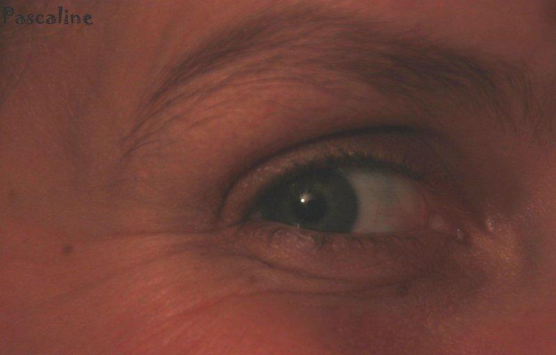 briller-les-yeuxlateteaunord-2c9b5e962a599b7959315f17c37a831eff55531b