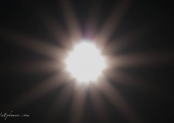 0652_briller-6c42adcbcb7698d813a0c12291888e5e1f1605e8