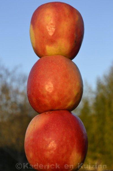 trois-pommes-b999eddf26f9a8cd508a2442fb2745c97aa1c21a
