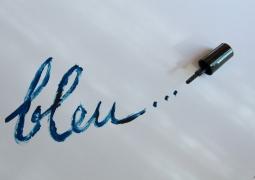 bleu-0d08c952127fdd50aecc87fbb4df2c4d781f0bf5