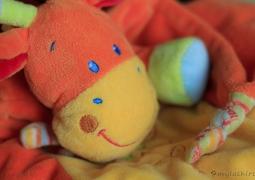 pp52_2012_photo13-douceur3-fa03a33a339407e75e62b30a63089165ef5f2790
