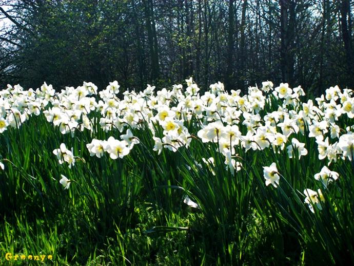 14-printemps-a1b1cfc105412cee870d166c7790cba71e25510c