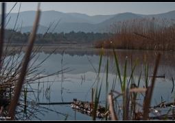 parc-naturel-plaine-des-maures-ddef9d7f7d20acac4f613d7b3f2136e223d00f61