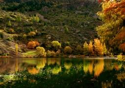 automne-848ad77ac3cc5ba33dd33b5765753266e5f70457