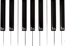 ps52-s17-noir-blanc-c4dddbaf392a2ec7457d9a3043cfff337528150e