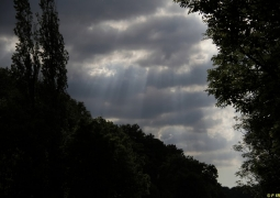 dans-les-nuages-10-31b21e93965c8e70599fd92f78d478621d4fb416