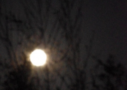 lune-essai-rate-red-c52278826ab9f7348091f388054a0407e35d62ce