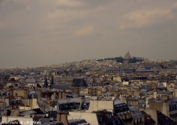 paysage-toits-de-paris-red-27eeac033fa6258a7578b0919f06fa1524767071