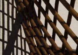 zigzag3652-copier-40cbeb43ca95ab4fdea1047673529ff86d19cd1d