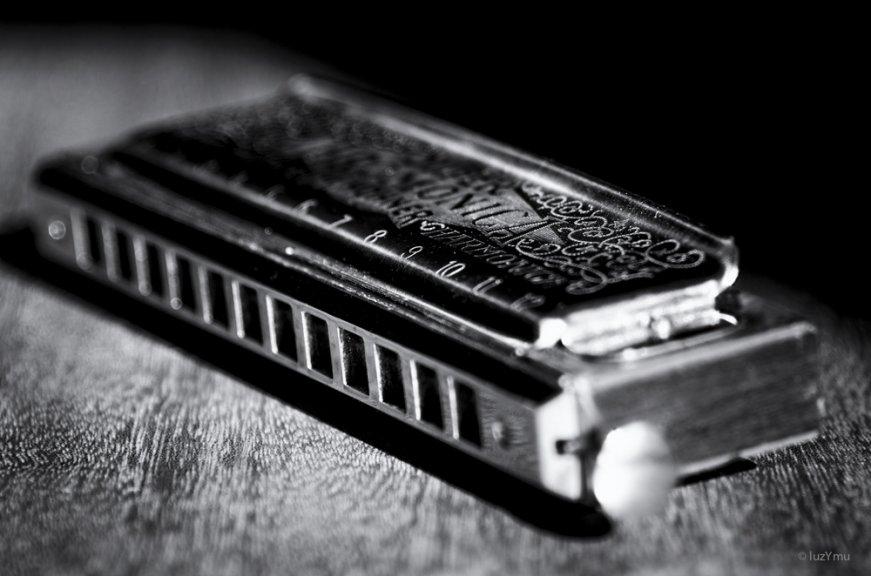luzymu-la-lettreh-harmonica-41-52-2111001b5bb0a433c9c4f704112dea0ad57c3792
