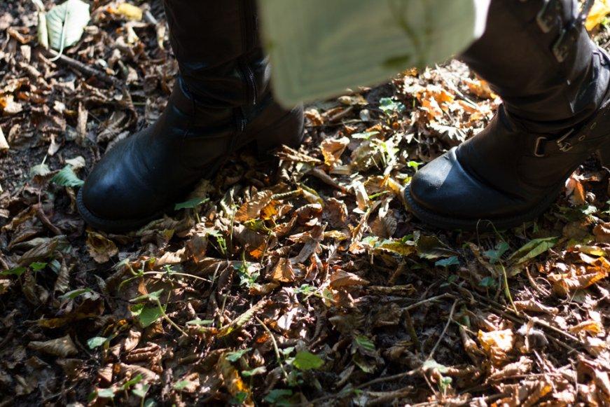 automne-1-6-de98ad057db404ed79ea23cd8c0cbb7e7028a50d