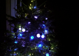 2013-12-16_froid_couleurs2-feb308d93fcd2024676046a821a2487977620679