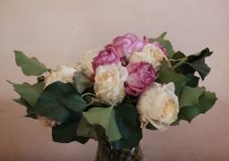 roses2-copie-d88c80051bdc90918679300fe04acdb8c8756a76