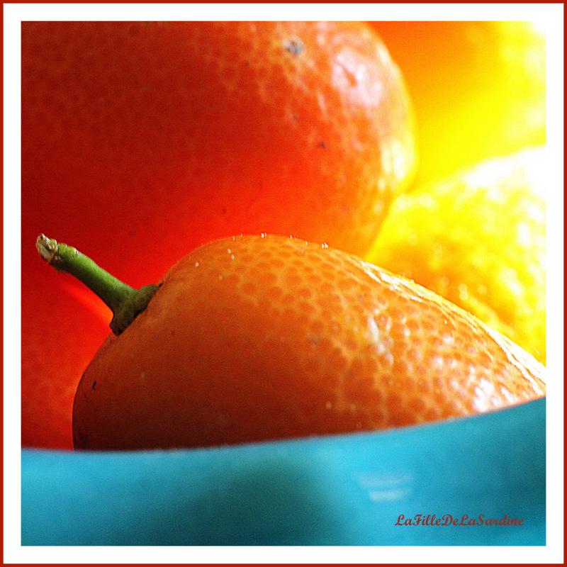 kumquats4-9f5225d662d3b094a71537108080fcf302396506