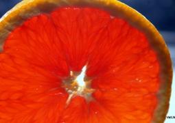 08_orange2-acc89502b6a4eb384400cadfc6e7528e9d78c4e0