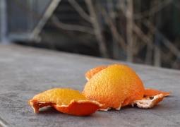 projet52_2013_8_orange-49136ea4091dbea19767c0b9442b03f5ac633b4f