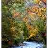 Projet Photo 42/52 : automne, récapitulatif