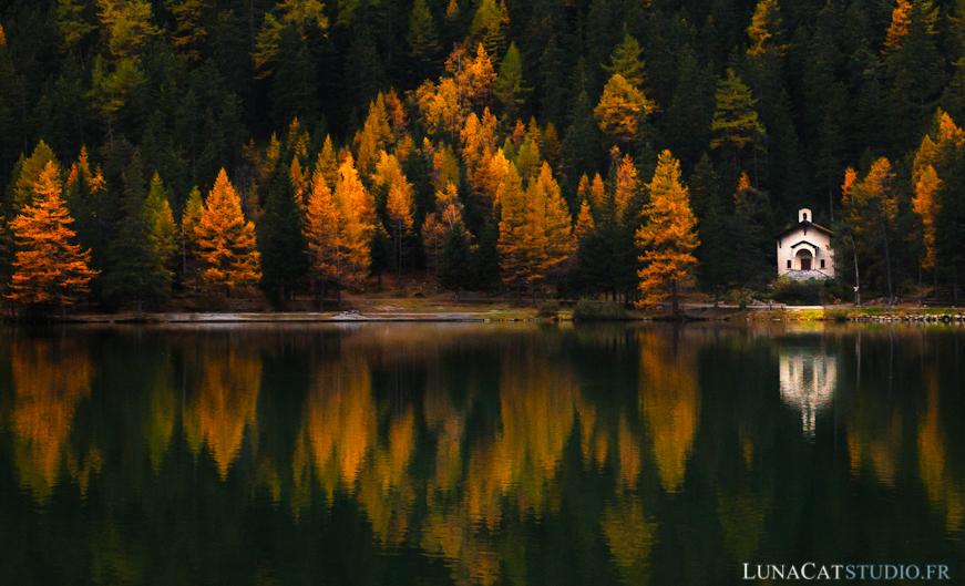 photo automne couleur