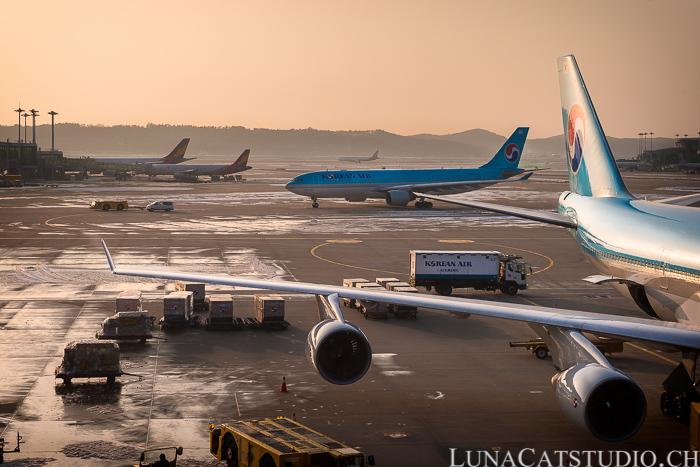 voyage nouvelle zélande choix compagnie aérienne